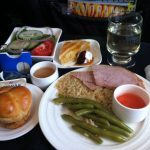 302-comida-copa-airlines