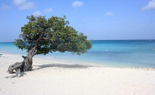 passagens promocionais caribe aruba