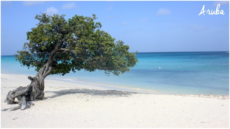 aruba-caribe-praia
