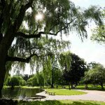 guia_de_boston-075
