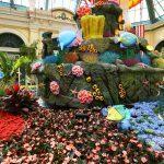Conservatório de flores