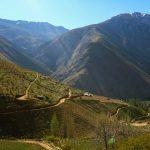 valle-elqui-turismo-chile-132