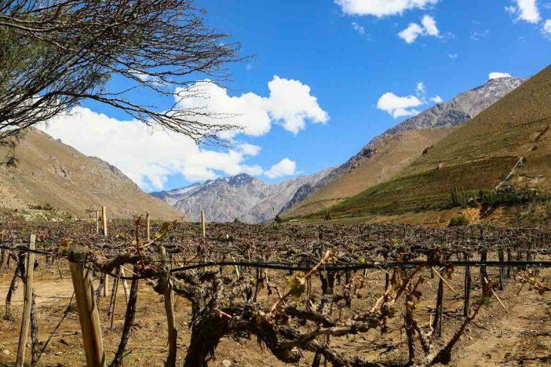 valle-elqui-turismo-chile-25
