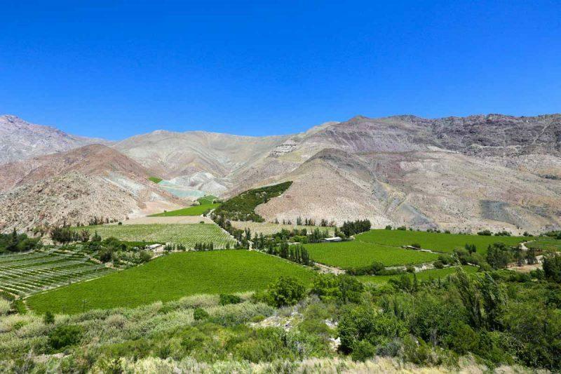 valle-elqui-turismo-chile-70