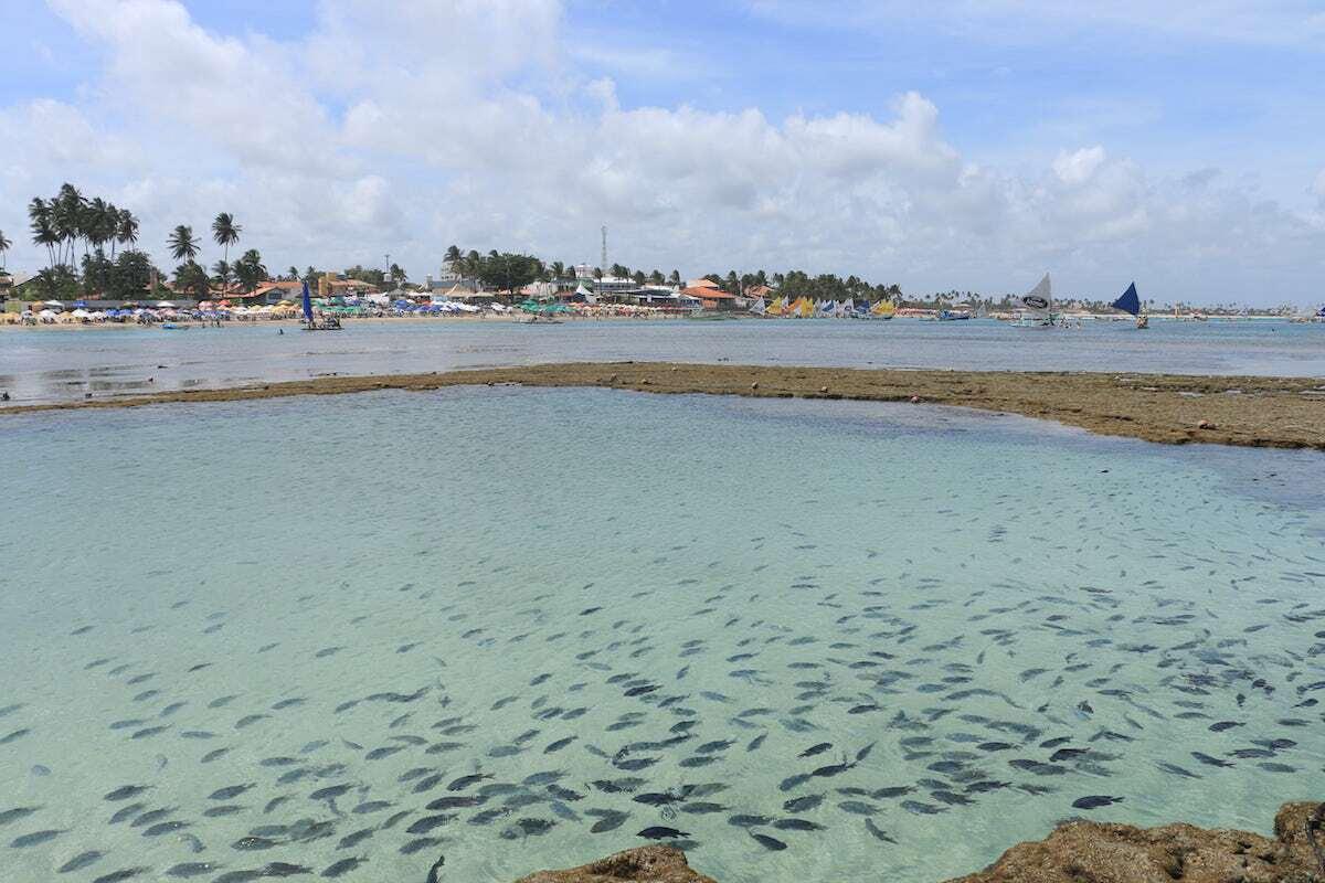 porto-galinhas-piscinas-naturais