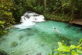 Cachoeira Jalapão