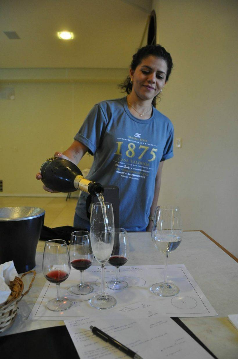 vinícolas no vale dos vinhedos