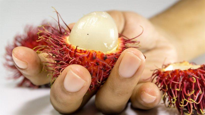 rambutao tailandia