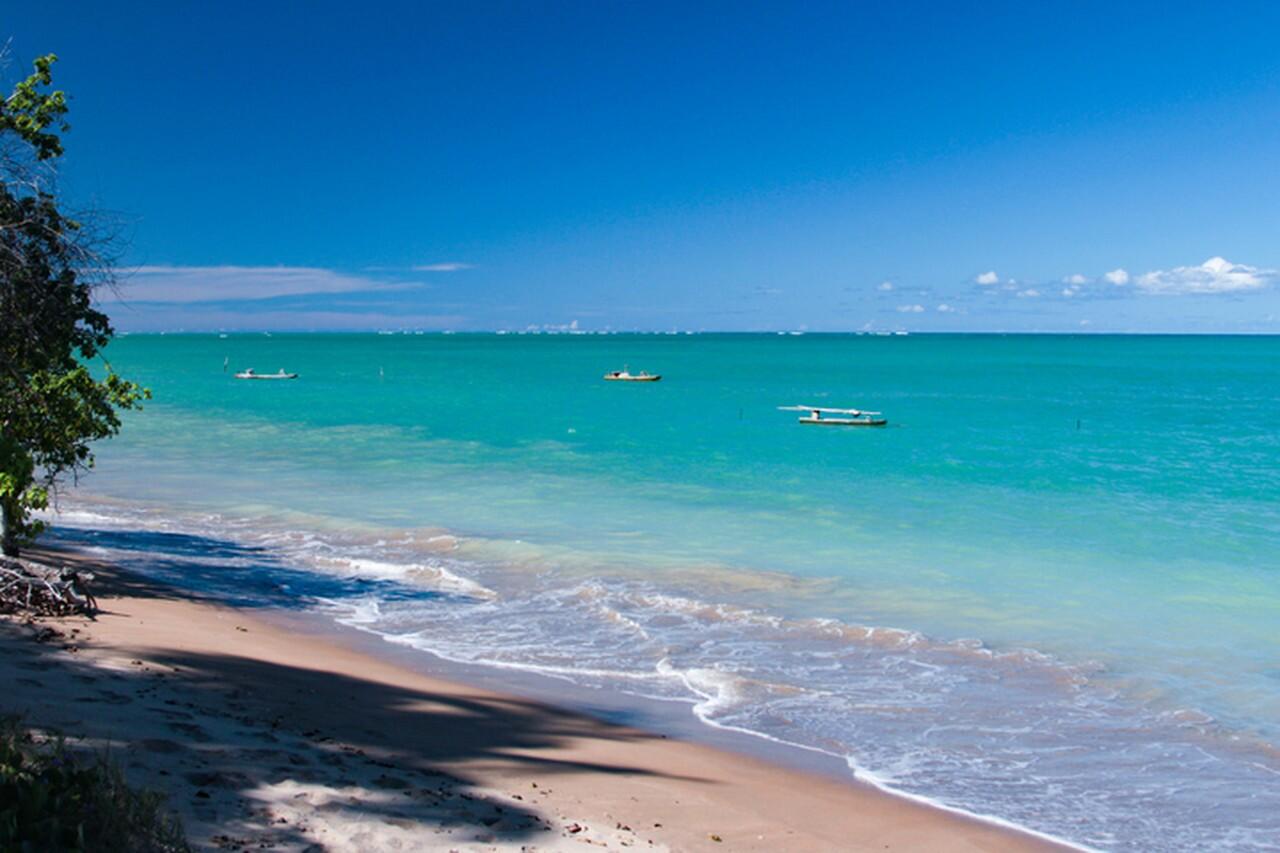 praia do patacho melhores praias do nordeste