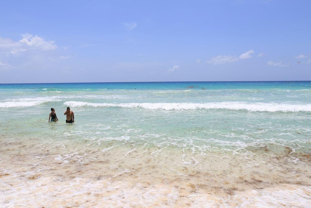 praia cancun algas