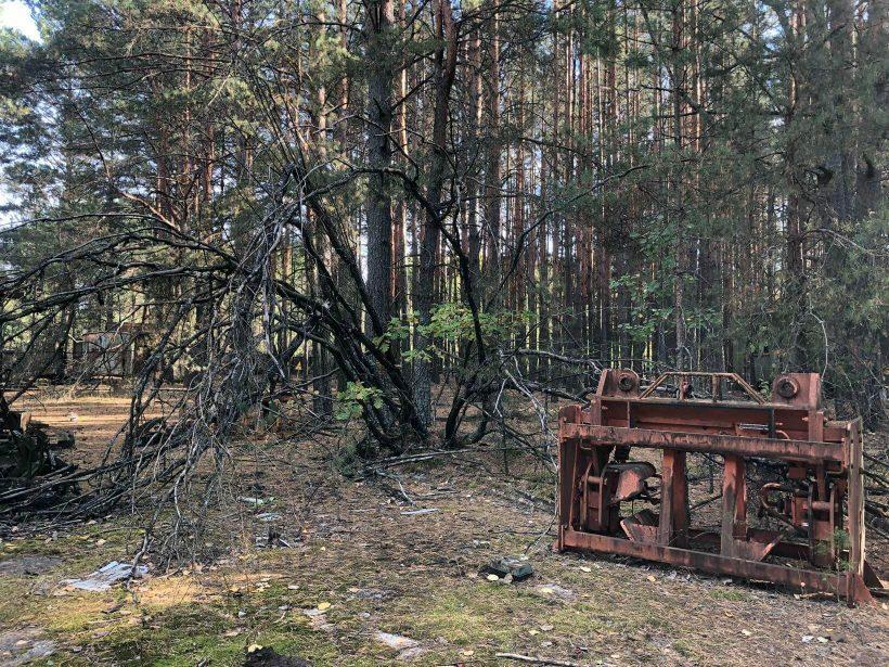 Abandono em Chernobyl