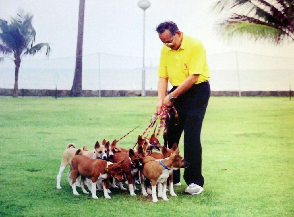 Abrigo para cachorros em Hua Hin, construído pelo rei da Tailândia