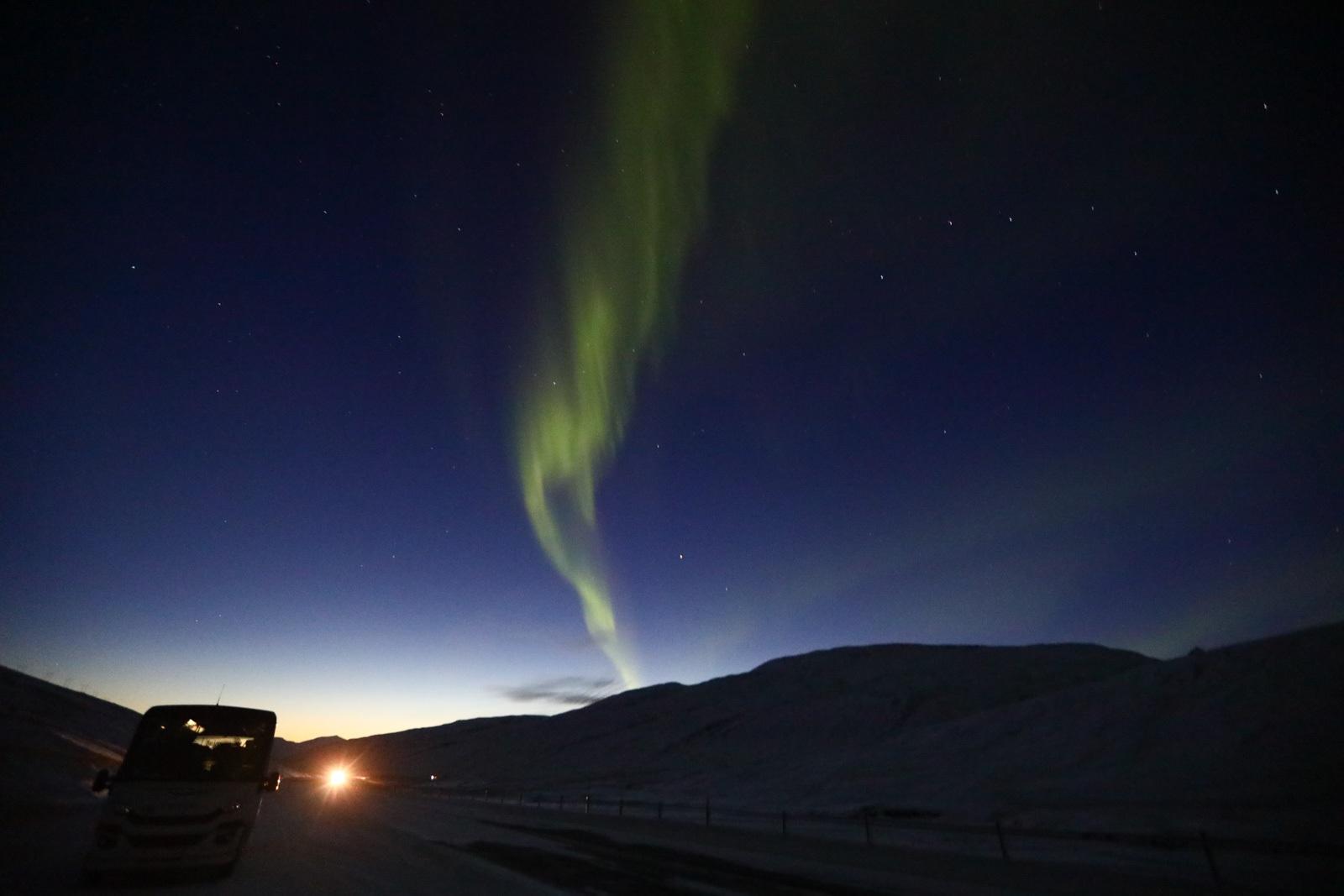Aurora Boreal na Islândia / Foto: Monique Renne