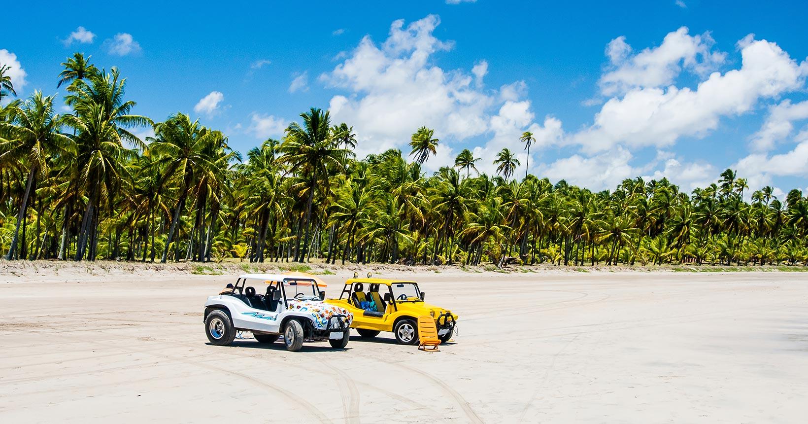 O que fazer em Maragogi: praias, pousadas e belezas do Caribe brasileiro!