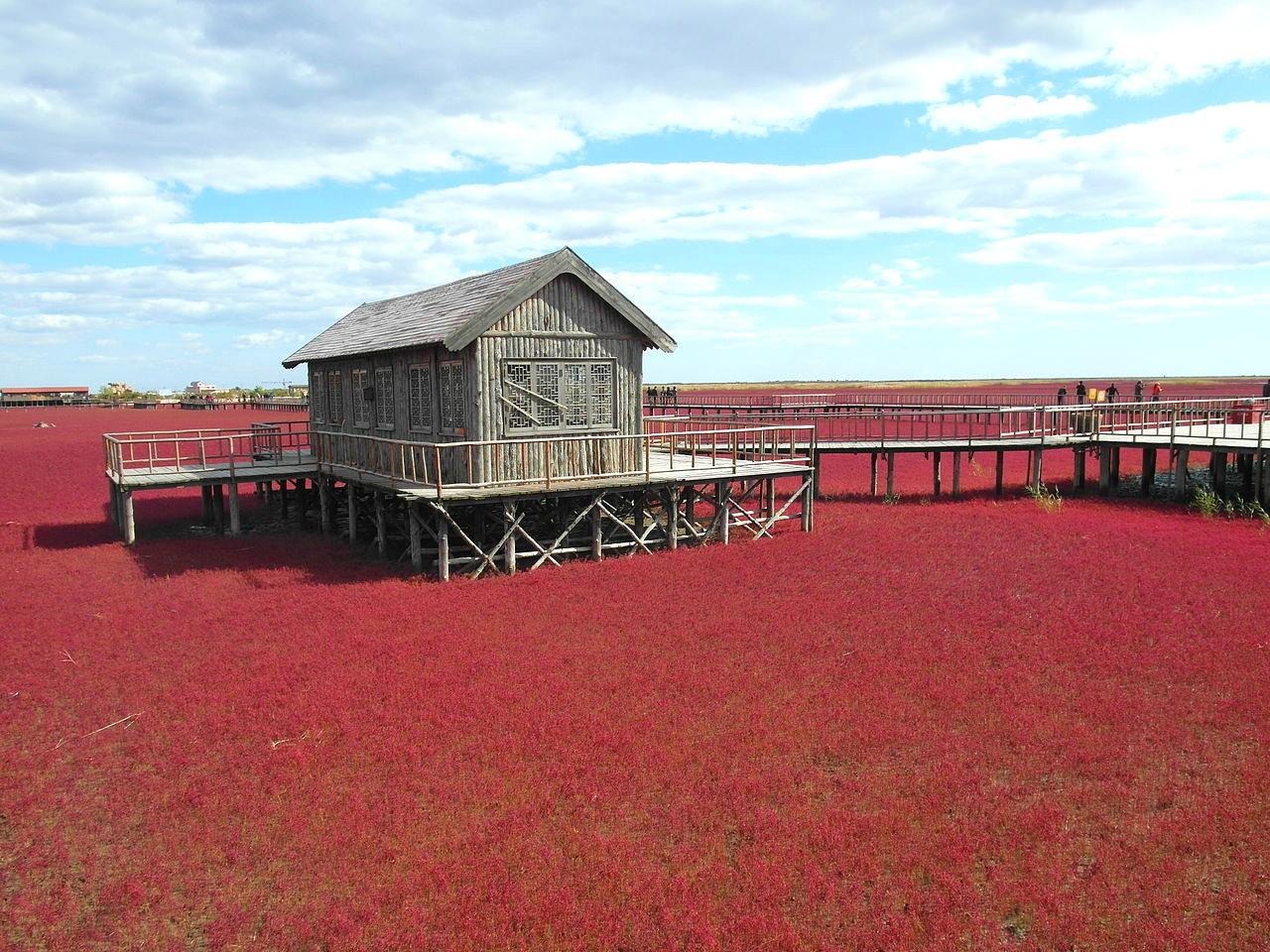 Praia Vermelha - China