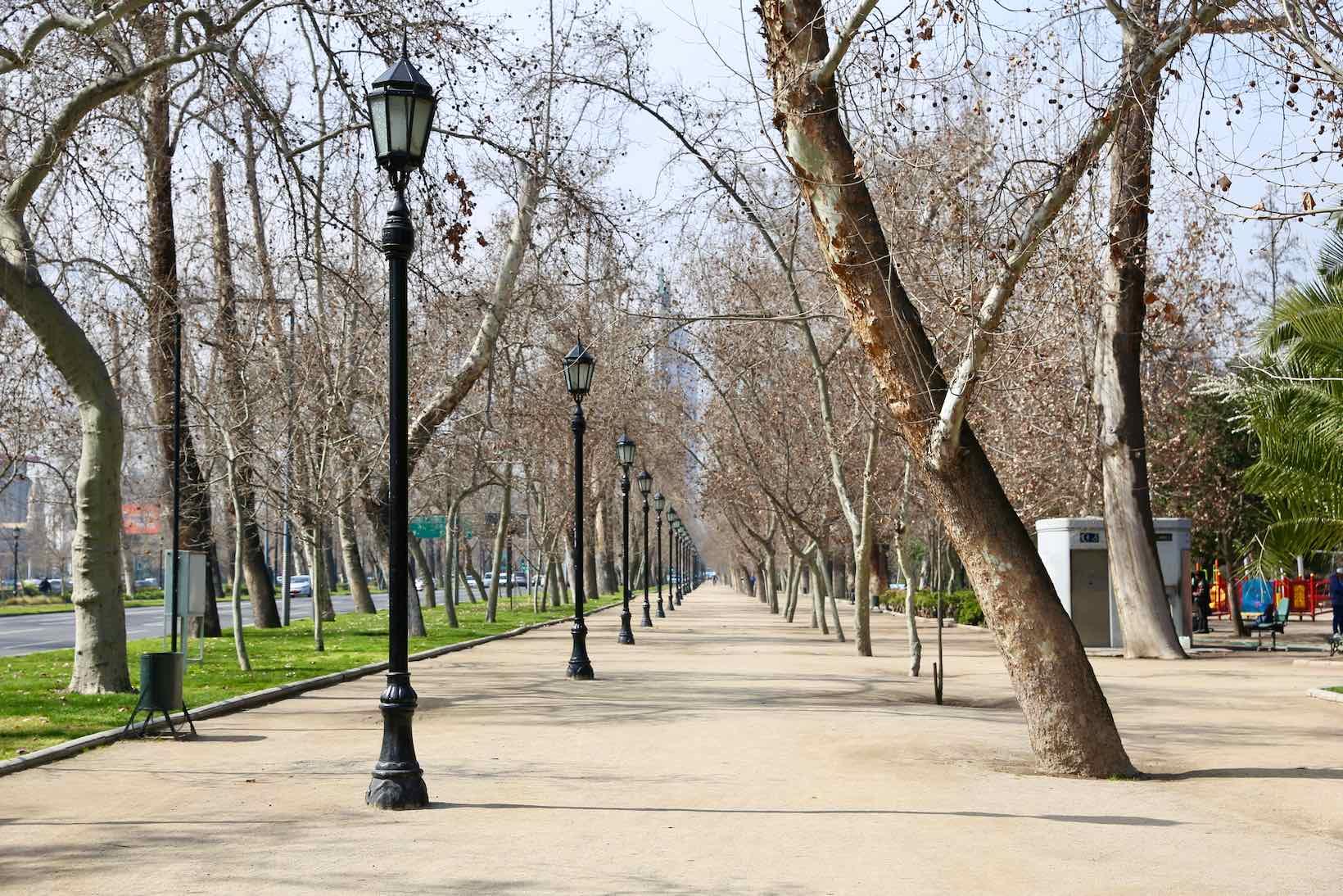 santiago chile parque florestal