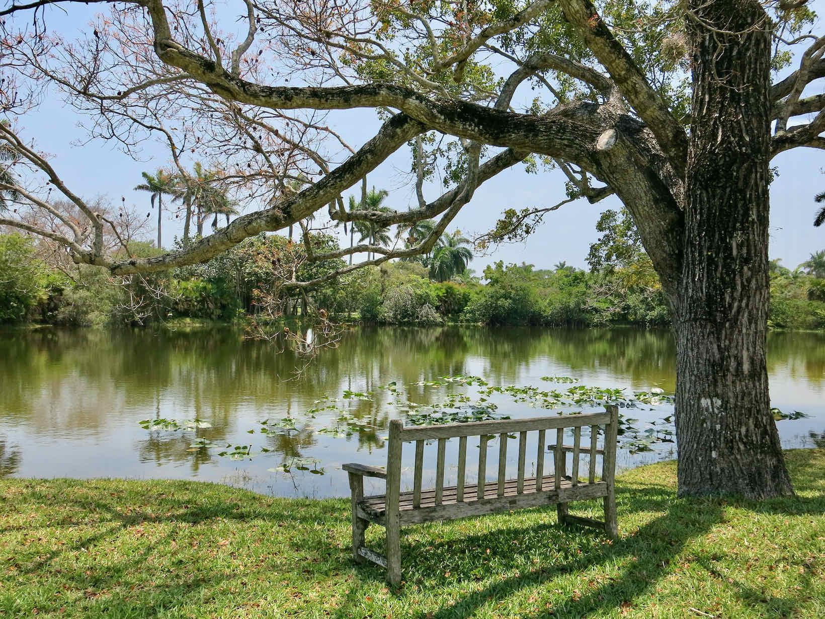 fairchild botanic garden miami